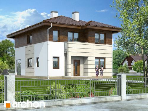 проект дома д1916